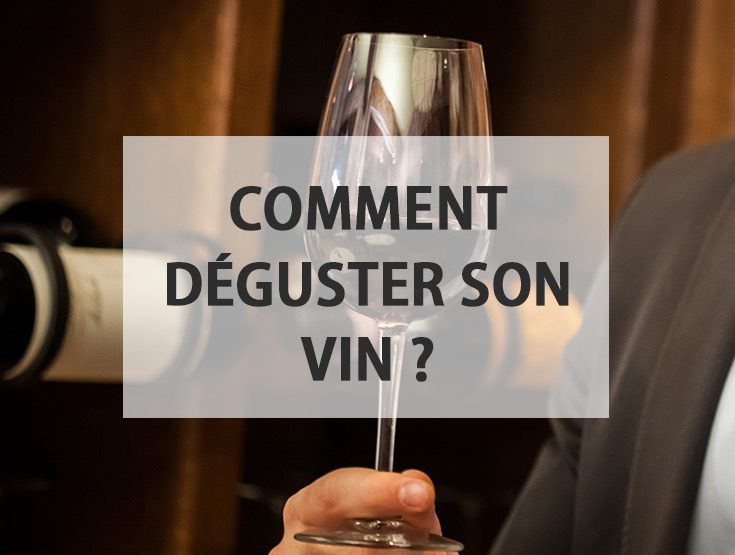 comment deguster son vin