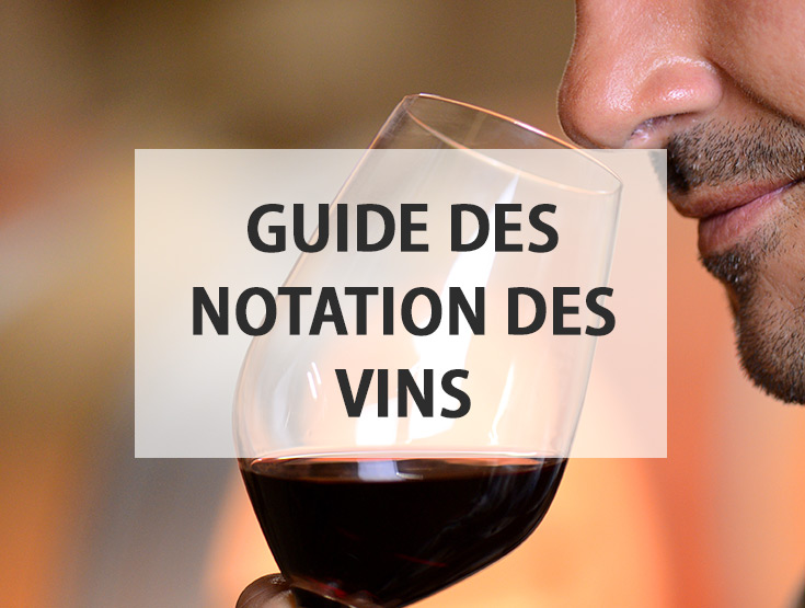guide des notations des vins