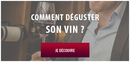 degustation vin